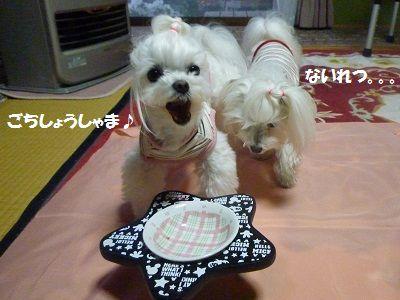 にゅー皿5