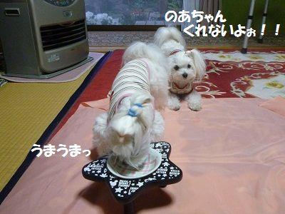 にゅー皿4