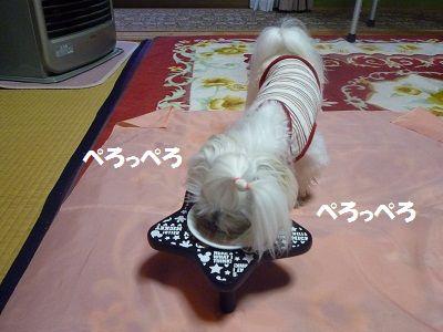 にゅー皿6
