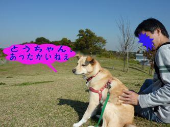PICT0950.jpg