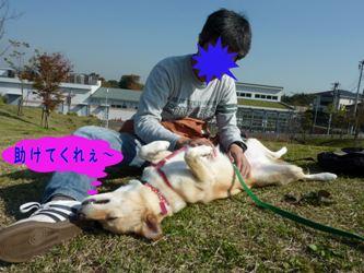 PICT0952.jpg