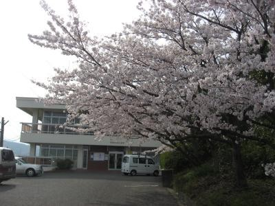 商工会館桜