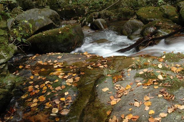 蛇淵の滝5