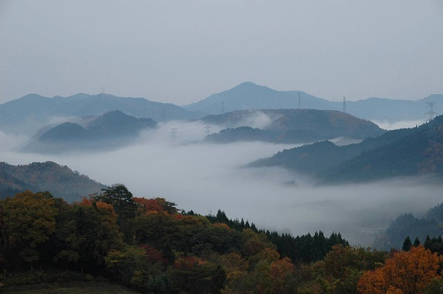 明智峠の雲海10
