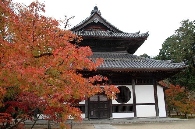 宝福寺12