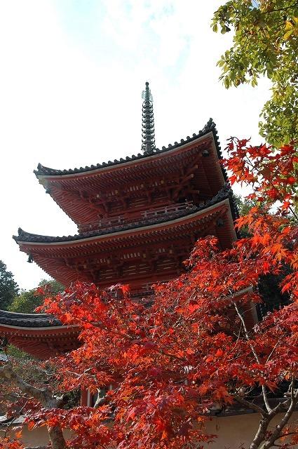 宝福寺31