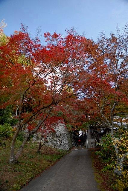 龍泉寺の紅葉22