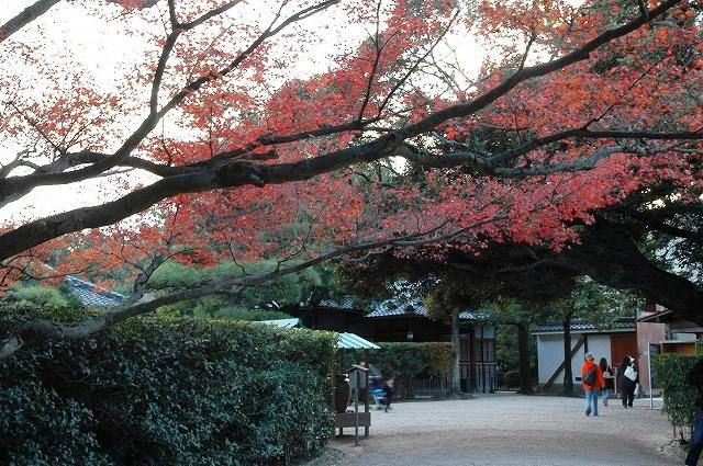 正門付近の紅葉