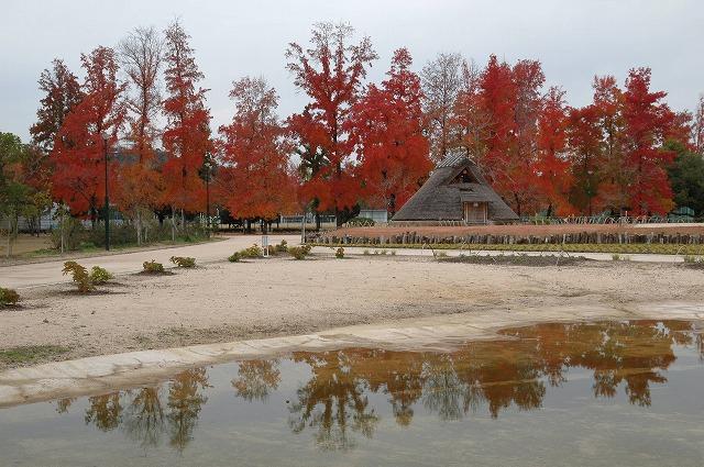 古代の住居と紅葉