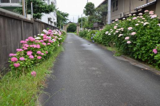 姫路浄水場-1