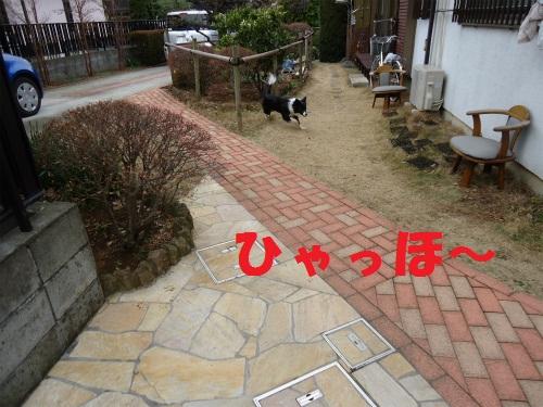 001_20130123210240.jpg