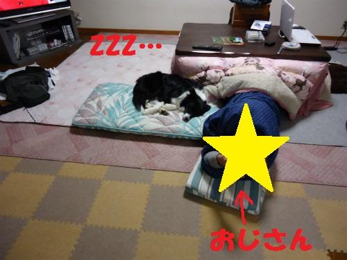 004_20130215221053.jpg