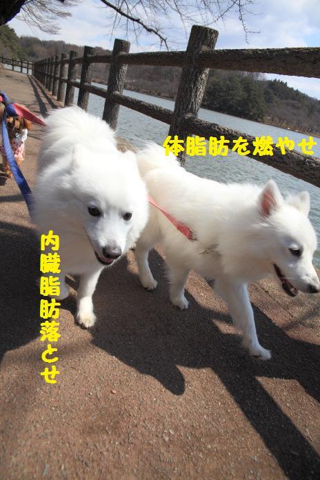 IMG_3375.jpg
