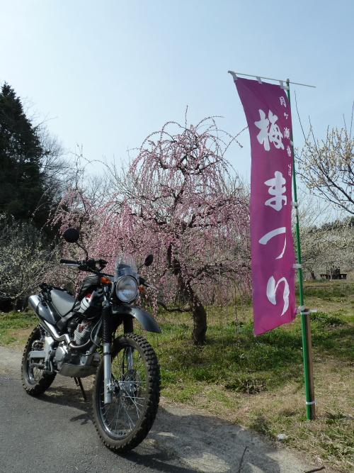 heijiT10(500-667_20130323003208.jpg
