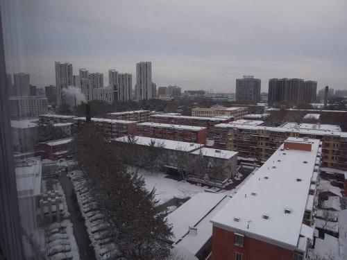 2009年11月2回目の雪