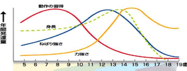 成長の推移 2