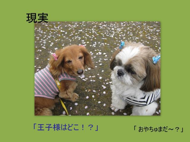 繧ウ繝ゥ繝シ繧ク繝・3_convert_20100409161531