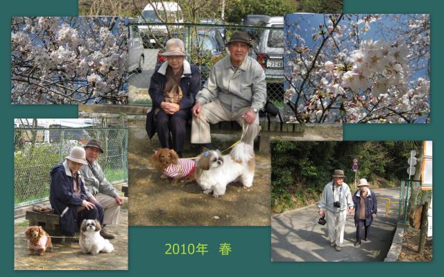 2010_03_272_convert_20100402163524.jpg