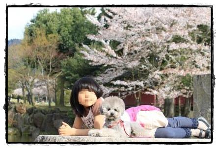 奈良公園3