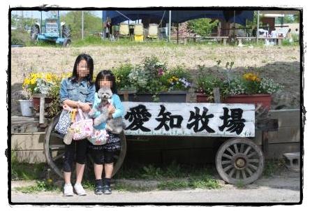 愛知牧場5