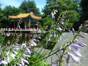 中国庭園 1 縮小