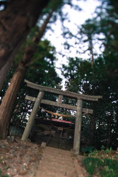 201301_kisei_157.jpg