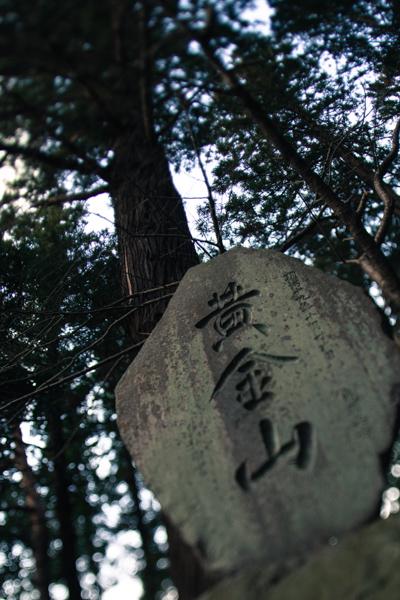 201301_kisei_163.jpg