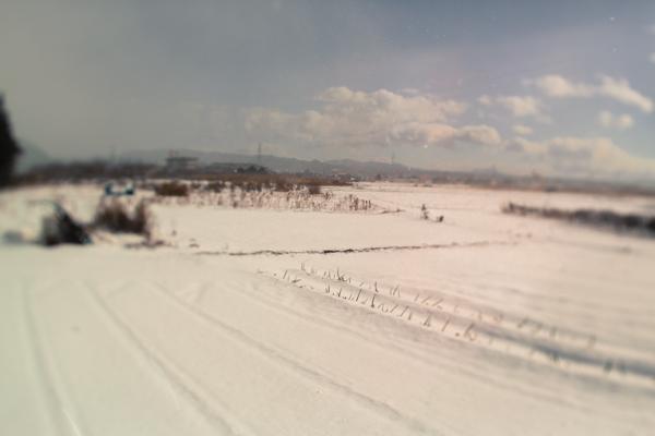 201301_kisei_30.jpg