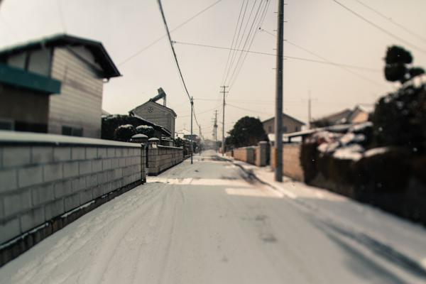 201301_kisei_35.jpg