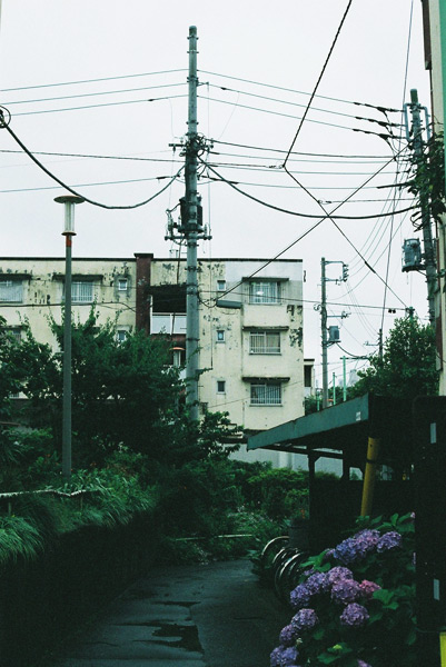 aoyamadanchi2_13.jpg