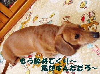 ugokimaten3_convert_20120325162154.jpg