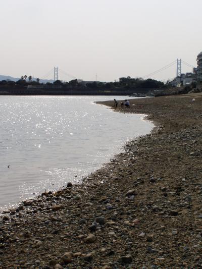 uminosunahama_convert_20120410004141.jpg