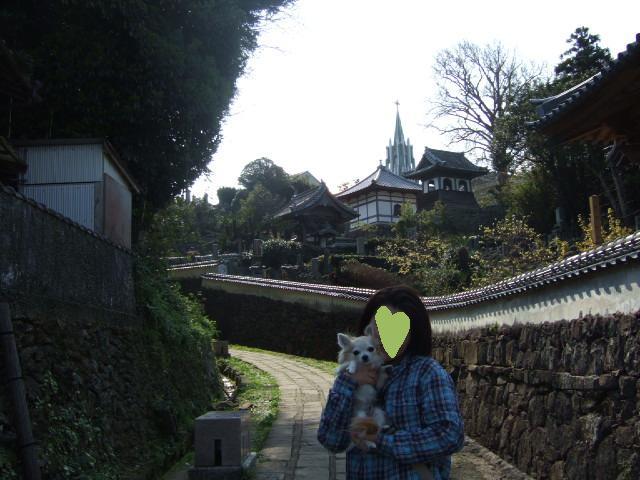 2010_03302010年3月お花見ドラ0034寺院と教会とHARUと私