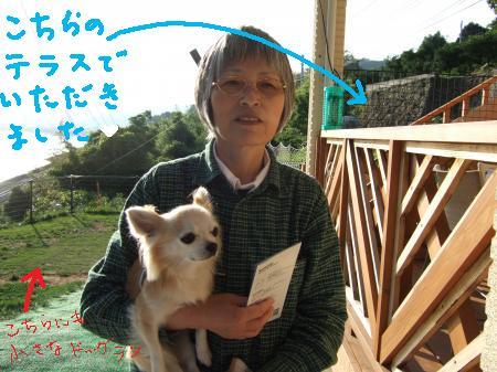 2010_05302010蟷エ5譛・0譌・0021_convert_20100531230142
