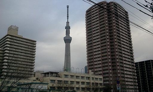 2012-02-082.jpg