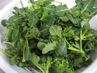 ブロッコリー・・・茎も葉も食べます♪