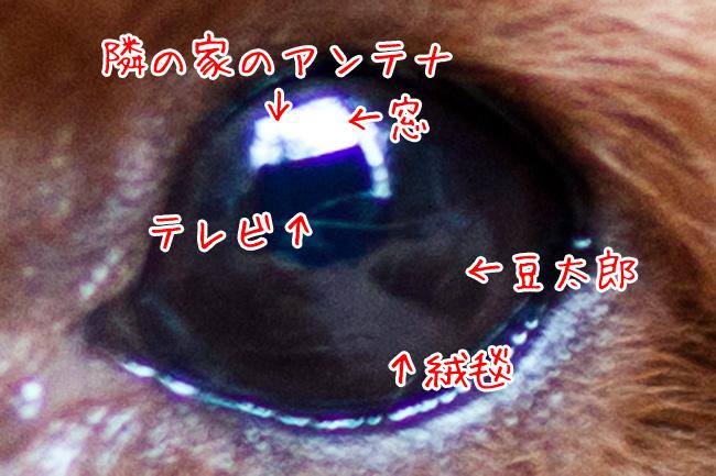 IMG_3147-2.jpg