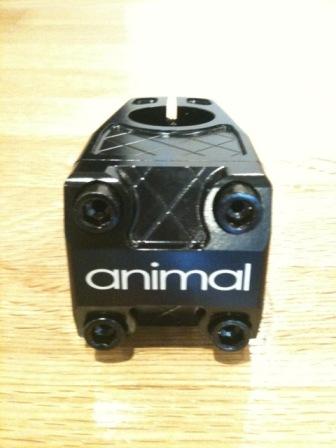 animal_1.jpg