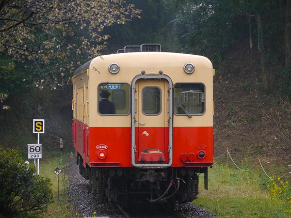 P1110283.jpg
