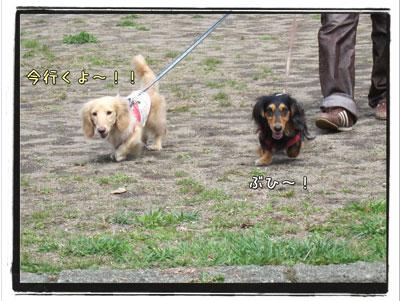 2010051805.jpg