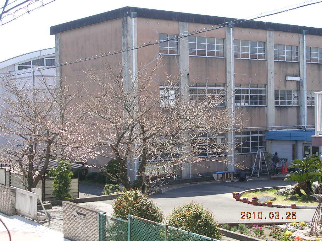 2010_0326_120815-DSCN7422.jpg