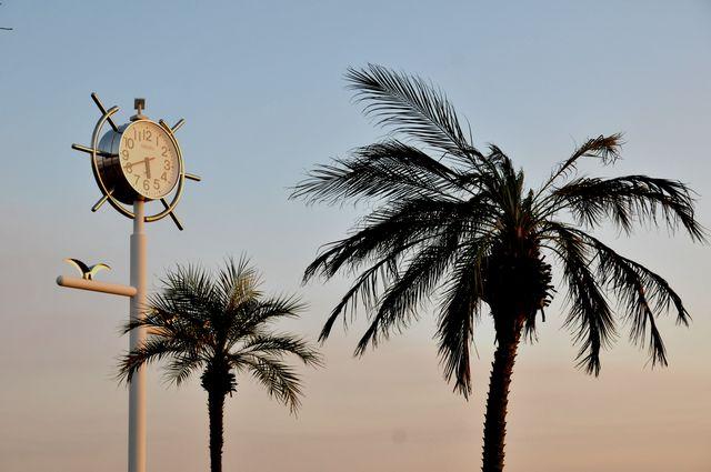ドルフィンポート時計