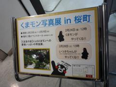 くまモン写真展in桜町 ダイジェストその4。