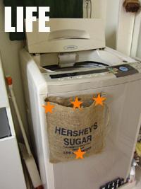洗濯バサミ入れのリベンジ
