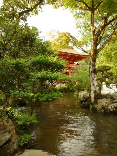 上賀茂神社9