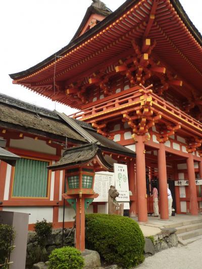 上賀茂神社18
