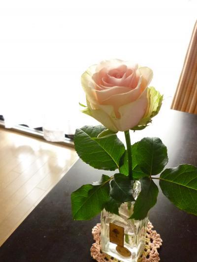 バラ&花瓶