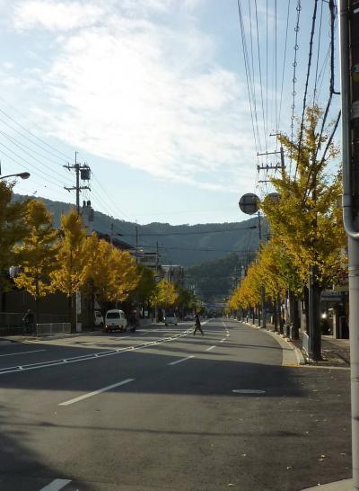 紅葉狩り・嵐山2