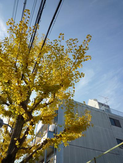 紅葉狩り・嵐山3