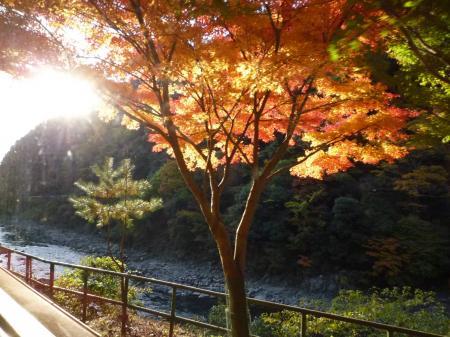 紅葉狩り・嵐山34